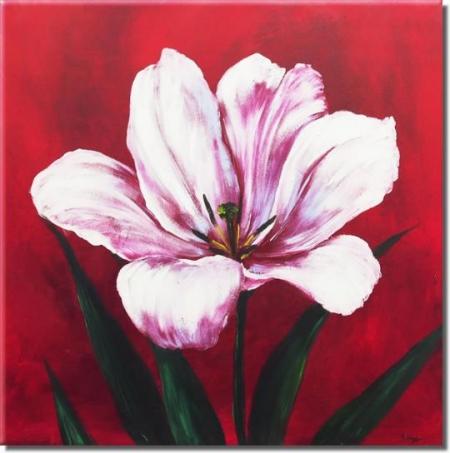 Růžovobílý květ na červeném pozadí